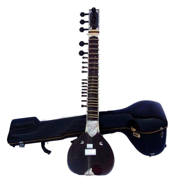 Sitar professional performance learning online store shop cost price