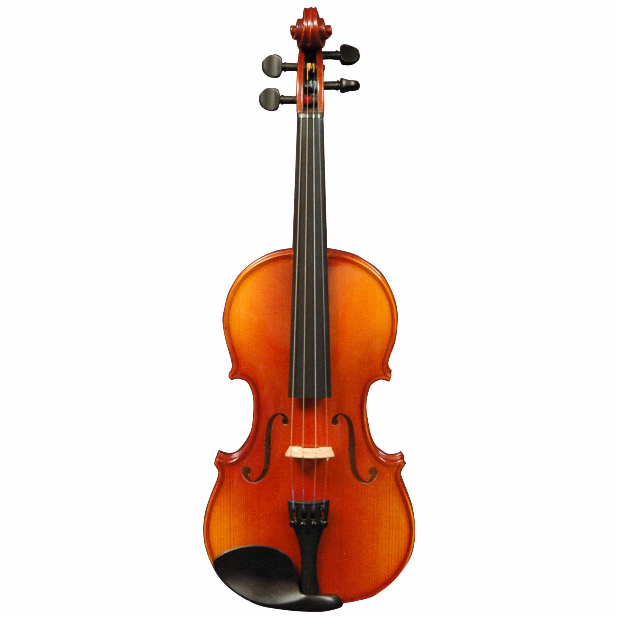 Buy Violin professional performance learning best cost music shop store